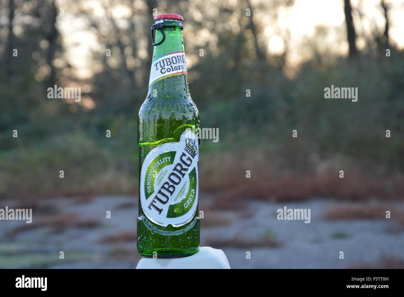 Tuborg Beer Stock Photos Tuborg Beer Stock Images Alamy