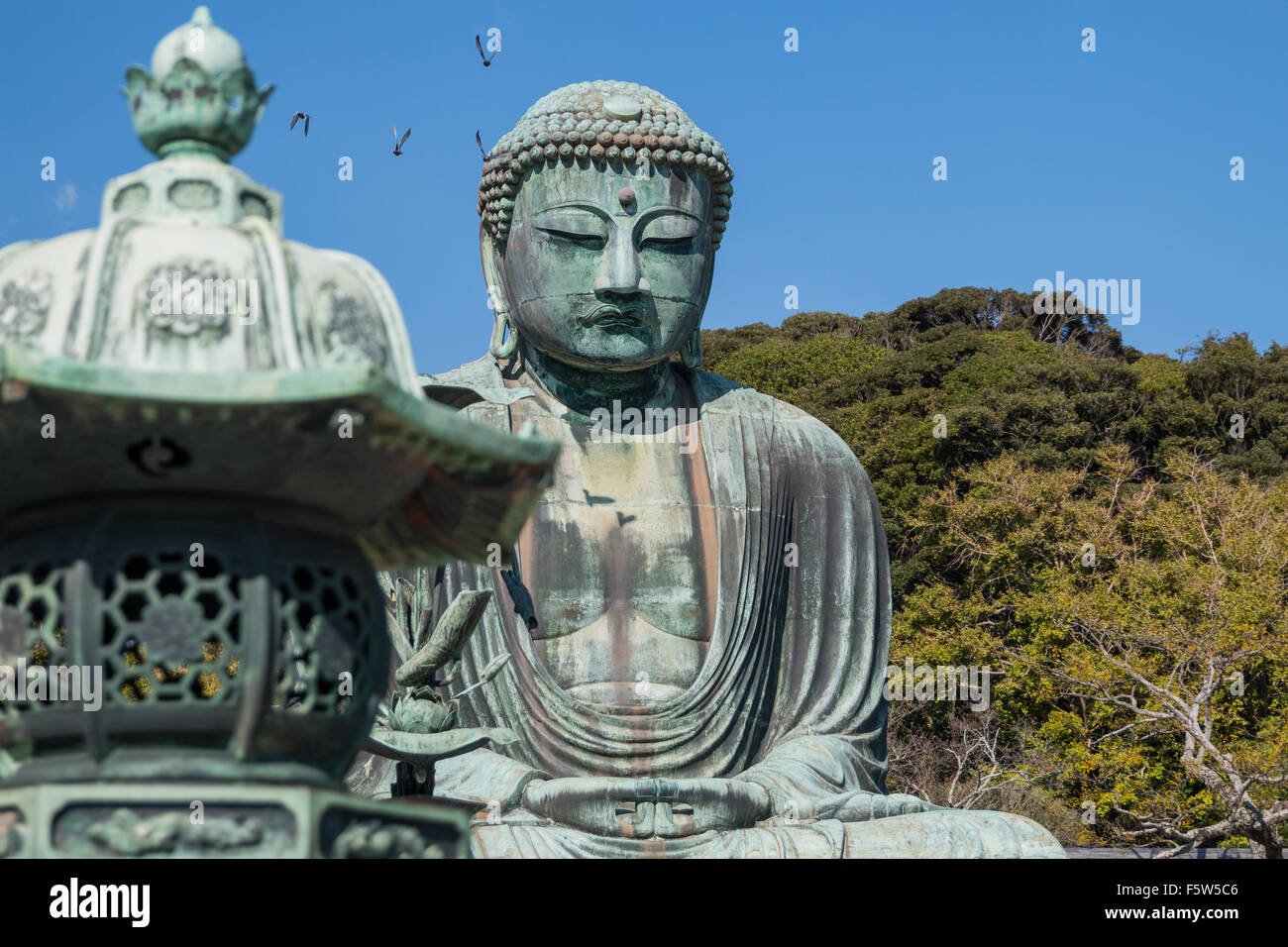 Kotokuin (Great Buddha of Kamakura) - Stock Image