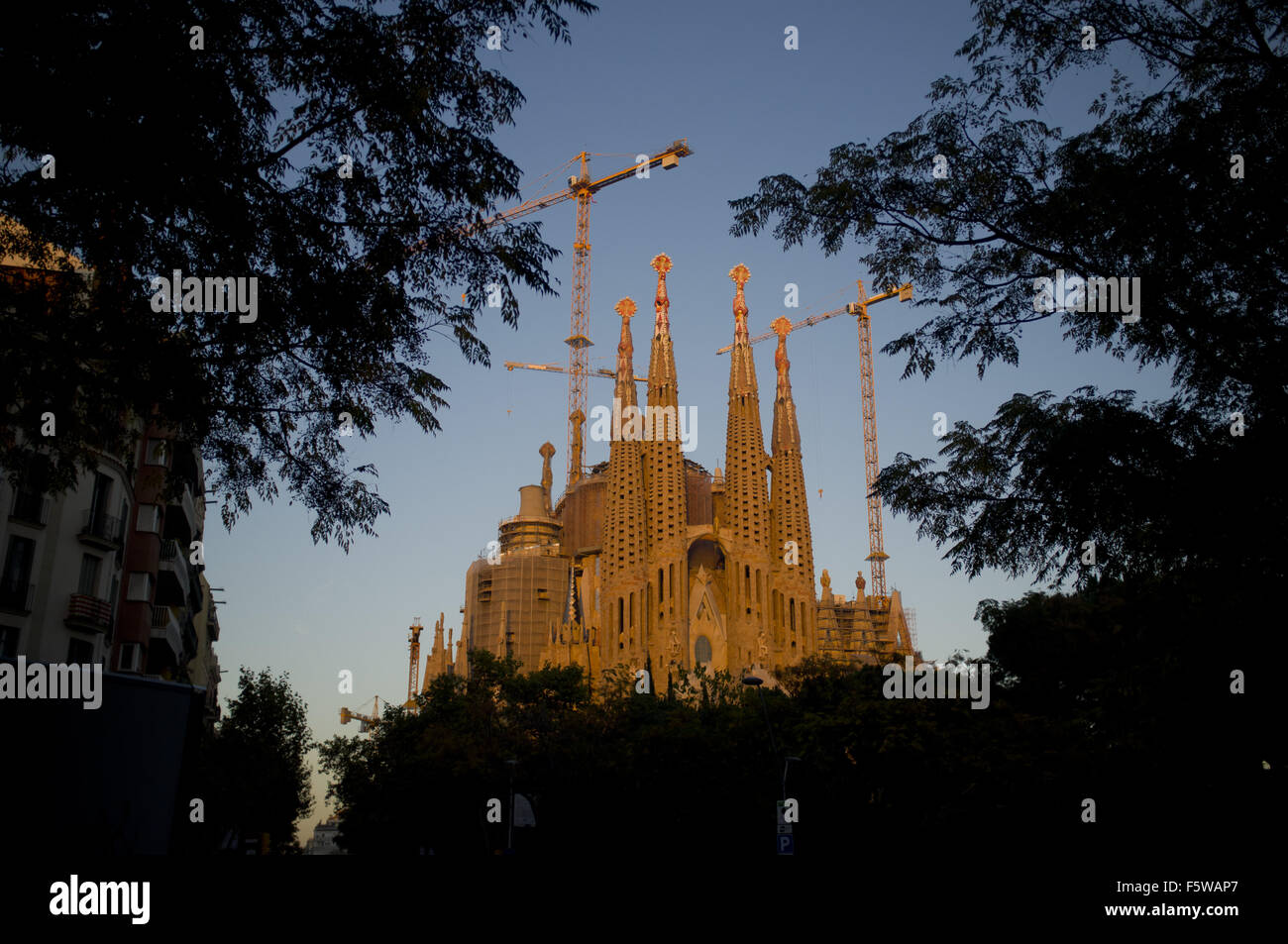 Barcelona, Catalonia, Spain. 9th Nov, 2015. La Sagrada Familia is seen through the trees at sunset in Barcelona. Stock Photo