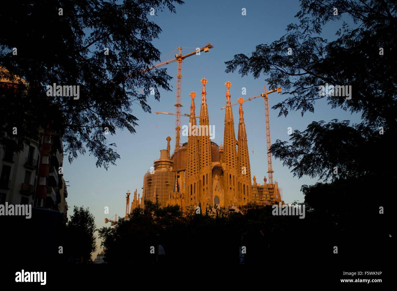 La Sagrada Familia is seen through the trees at sunset in Barcelona. Stock Photo