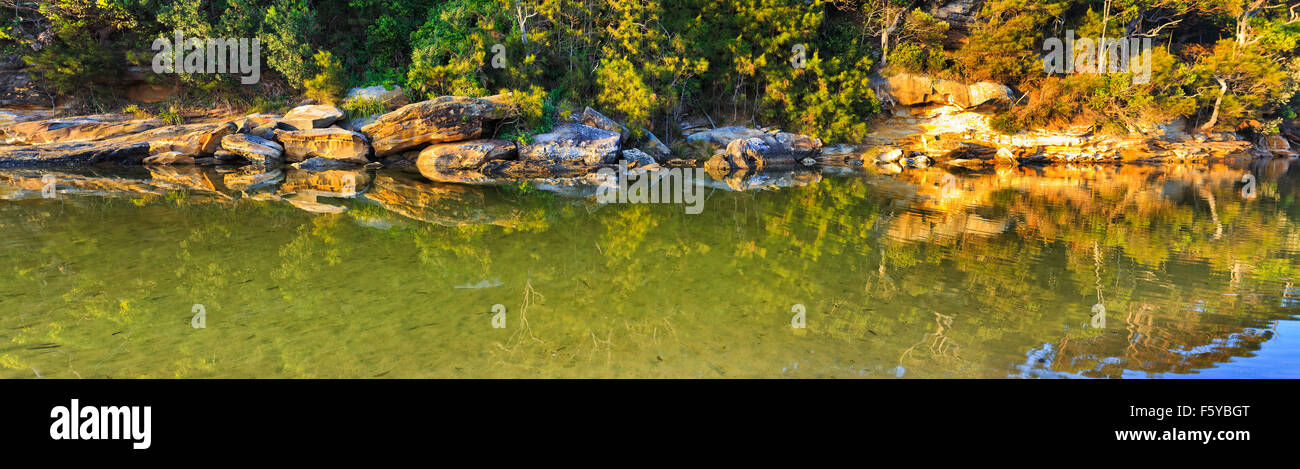 freshwater billabong in Royal National park of NSW, Australia in panoramic view over still pond reflecting rocks, - Stock Image