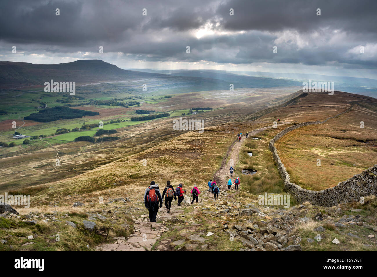 Walkers descend the path from Whernside, in the Yorkshire Dales National Park, with a view of Ingleborough hill - Stock Image