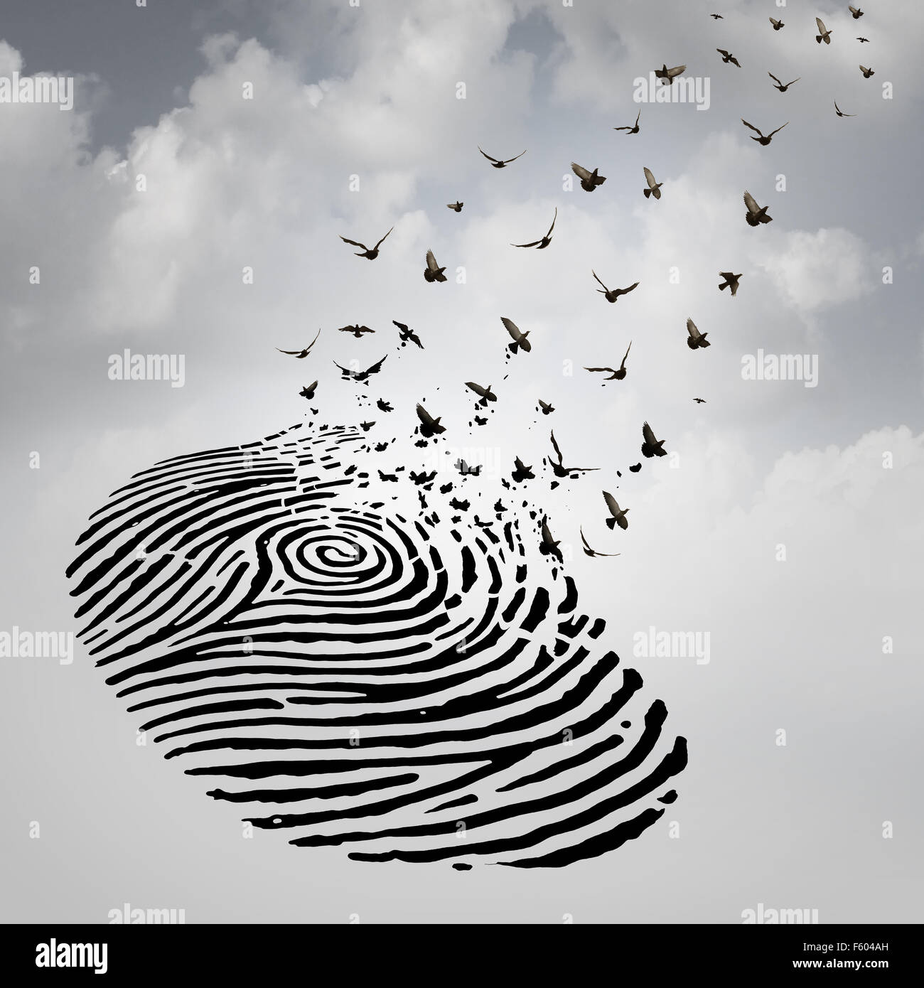 Identity freedom concept as a fingerprint transforming into flying birds as a metaphor for a person losing a psychological - Stock Image