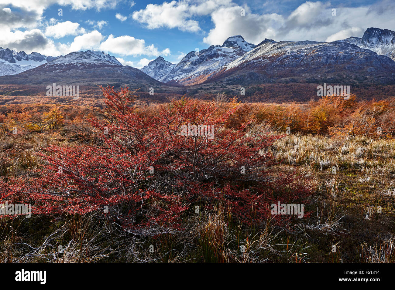 Mountains, Sierra Alvear, Valle Tierra Mayor, Tierra del Fuego National Park, Argentina - Stock Image