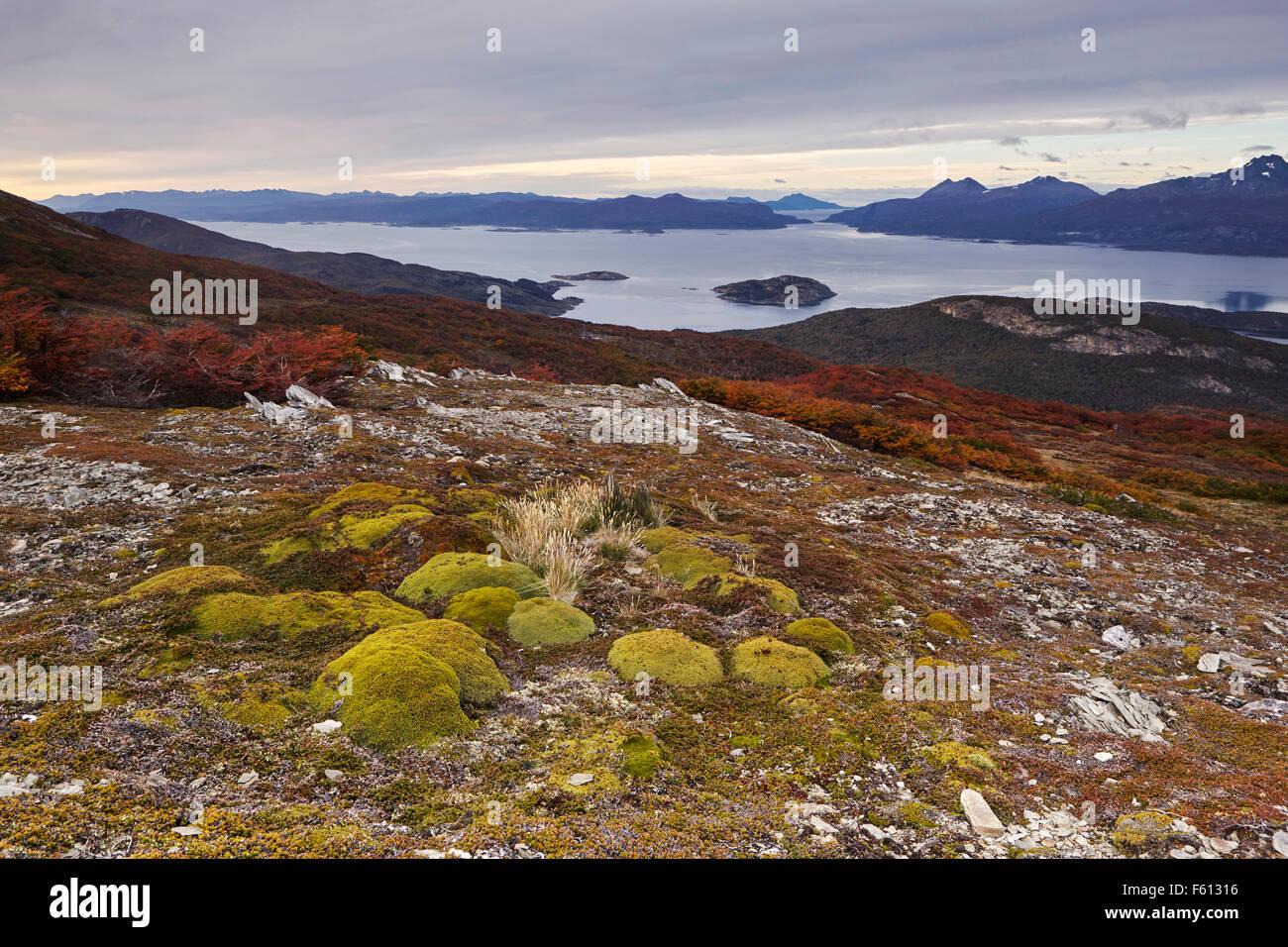 Canal Beagle Onashaga, Tierra del Fuego National Park, Argentina - Stock Image