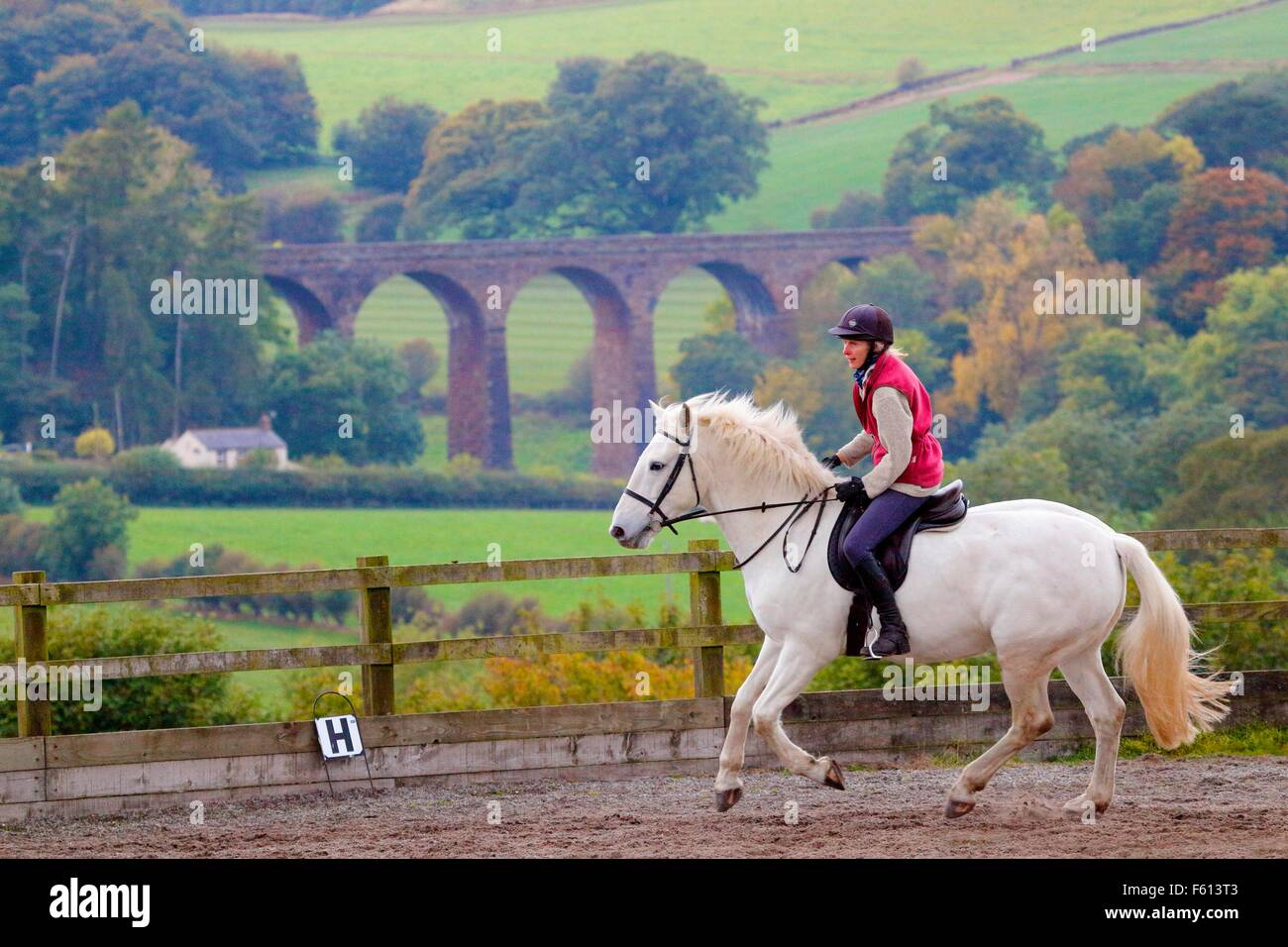 Woman rider practicing dressage in paddock. In the background Dry Beck Viaduct, Armathwaite, Eden Valley, Cumbria, Stock Photo
