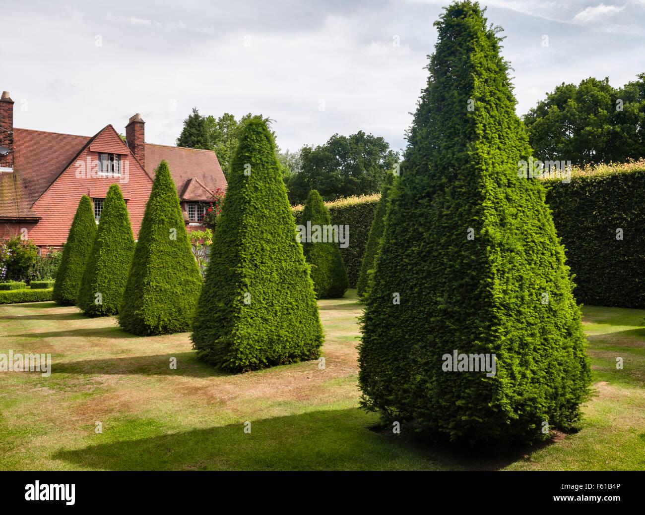 East Ruston Old Vicarage gardens, Norwich, Norfolk, UK. The King's Walk - Stock Image