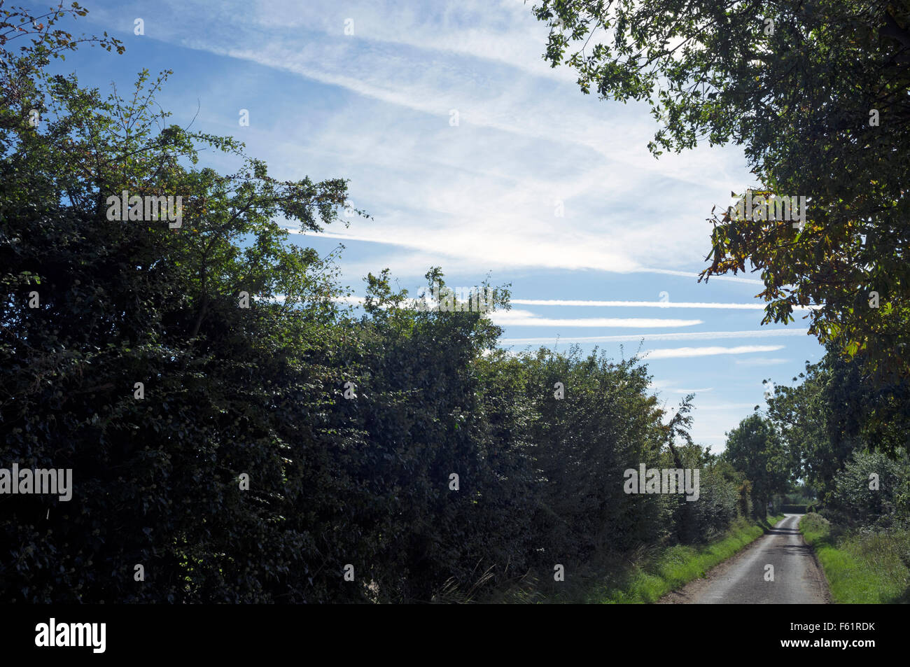 Vapour trails from commercial airliners over Bawdsey, Suffolk, UK. - Stock Image