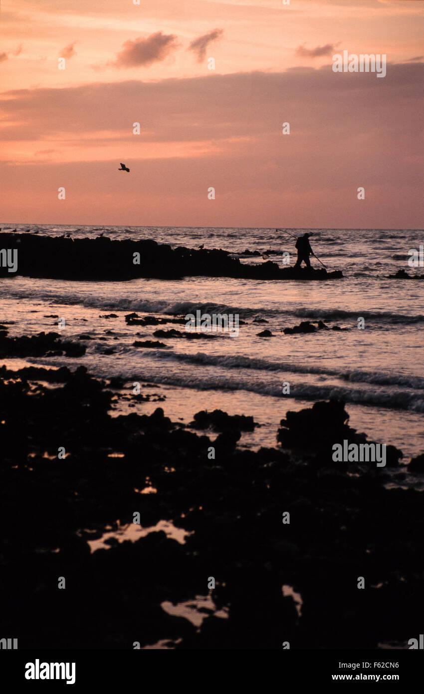 Pecheur à pied à Saint-Valery-en-caux at the sunset - Stock Image