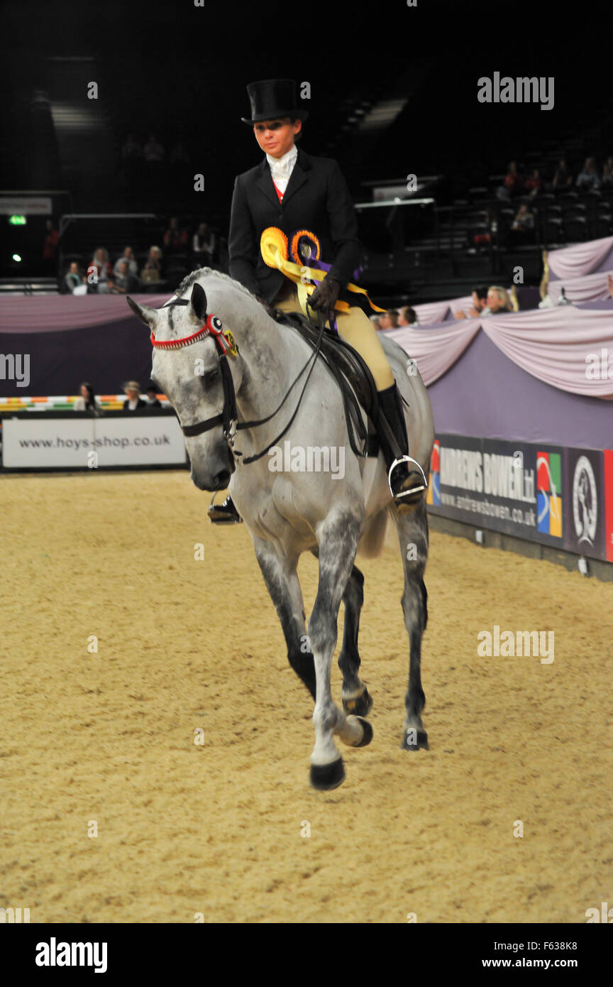Trade Stands Hoys 2015 : Horse of the year show 2015 day 2 featuring: flaygray faye stock