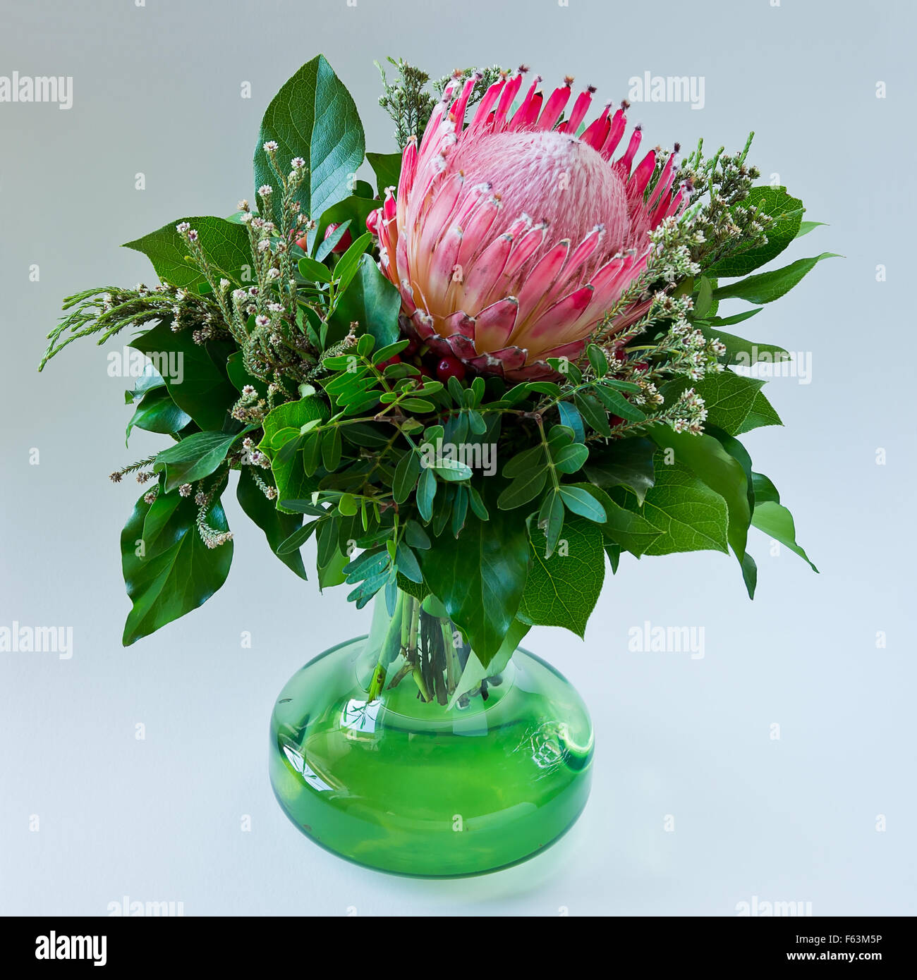 A Single Bloom Protea Bouquet: Wonderful Bouquet Of A Single Protea Blossom In A Green