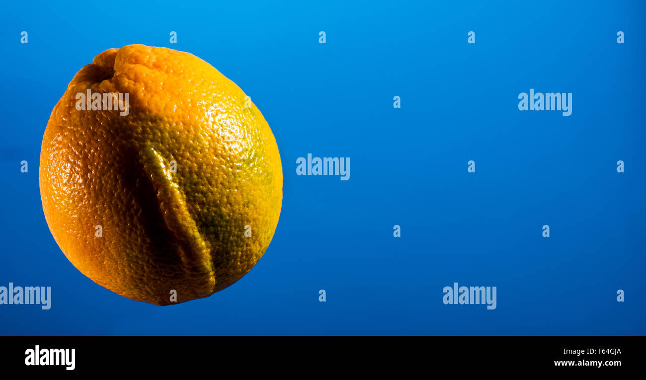 ORANGE on blue background, space for text layout, copyspace, text, font, fruit, food, vitamin C, colds, flu, flu - Stock Image