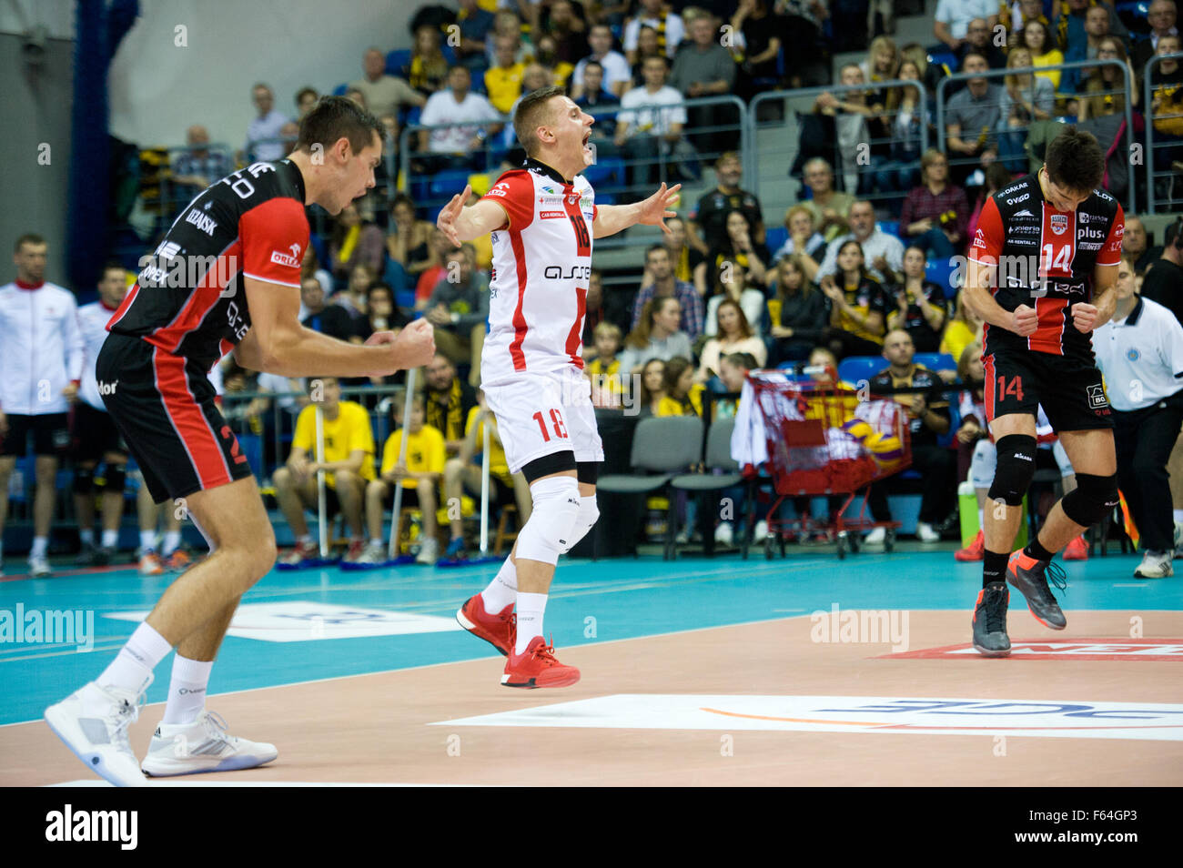 Belchatow, Poland. 11th November 2015. Team Asseco Resovia Rzeszow pictured during the game with PGE Skra Belchatow - Stock Image