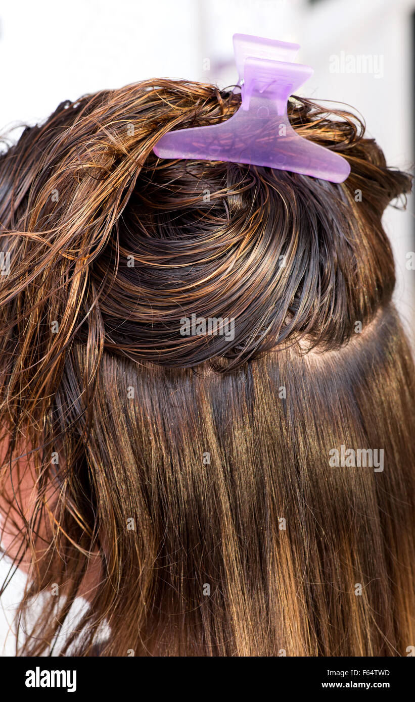 Clean wet washed long brown hair of a woman client - Stock Image