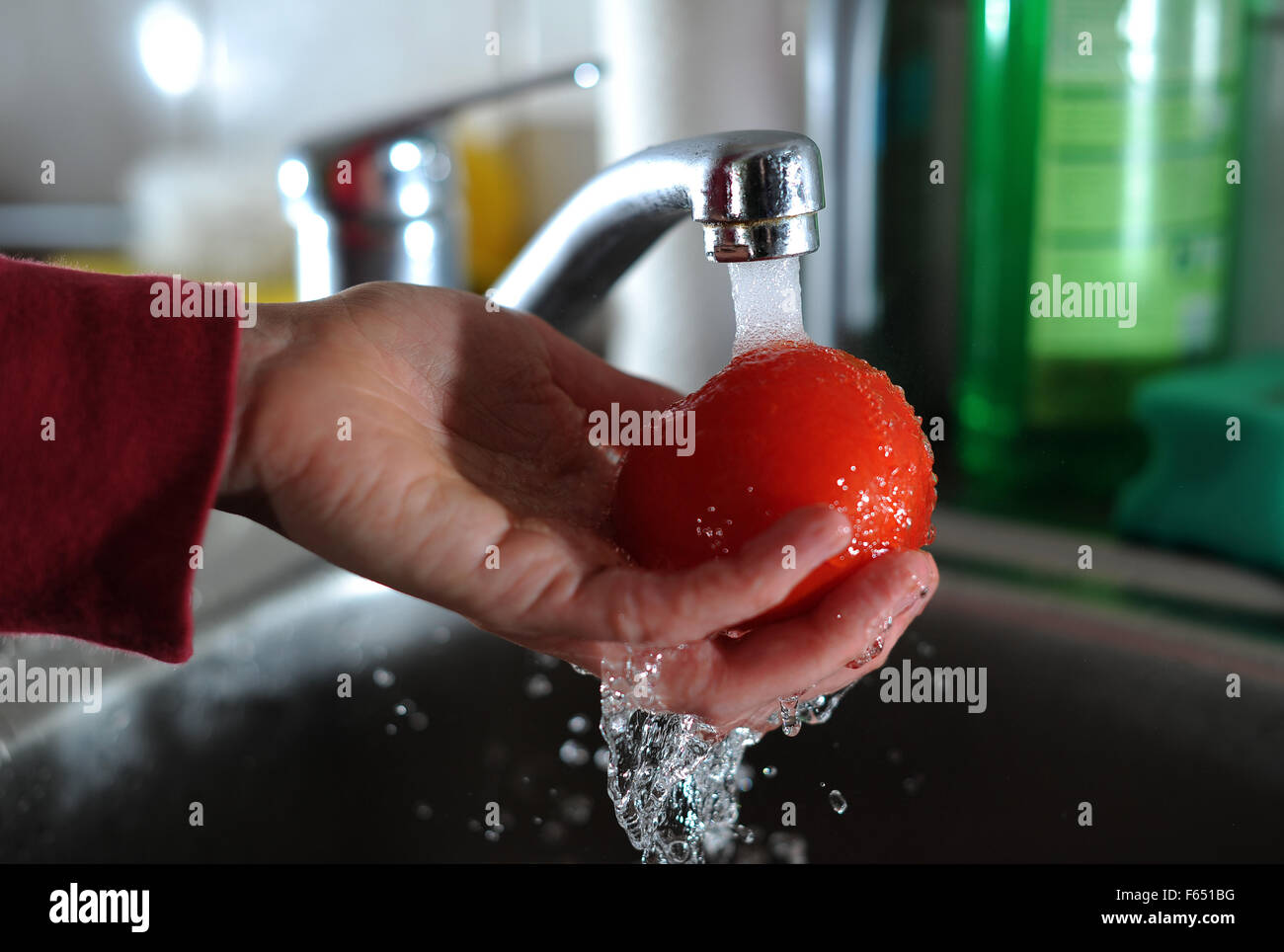 Illustration - A tomato is washed up in Dresden (Saxony), Germany, 11 March 2013. Photo: Thomas Eisenhuth Stock Photo