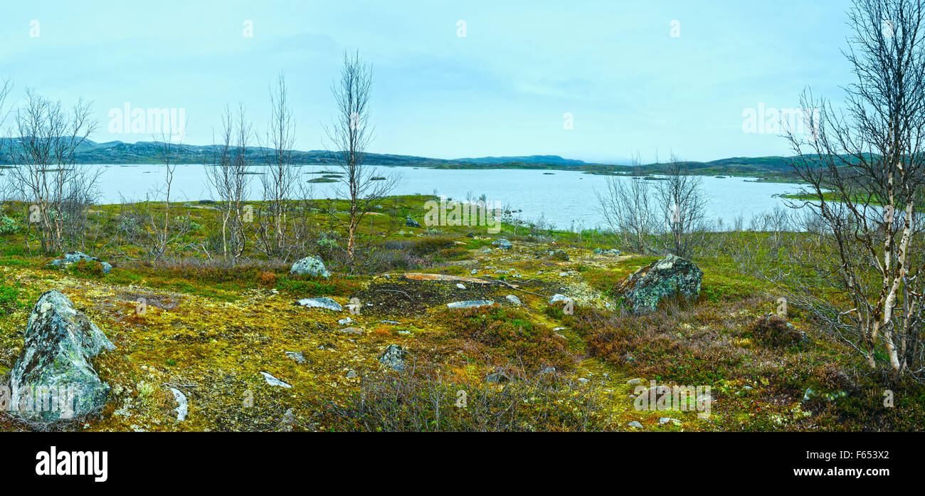 Tornetrask lake summer cloudy view ( Lapland, Norrbotten County in Sweden)/ - Stock Image