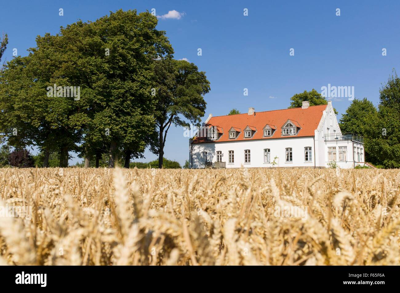 The manor house on the island of Poel, Wismar Bay in the Baltic Sea - Stock Image
