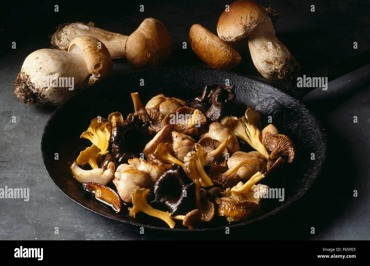 Mushroom Fricasse Stock Photo