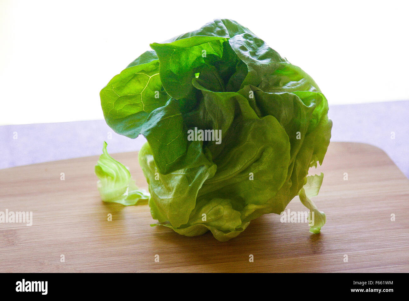 Salad ingredients, lettuce, backlit on granite cutting board on a cutting board - Stock Image