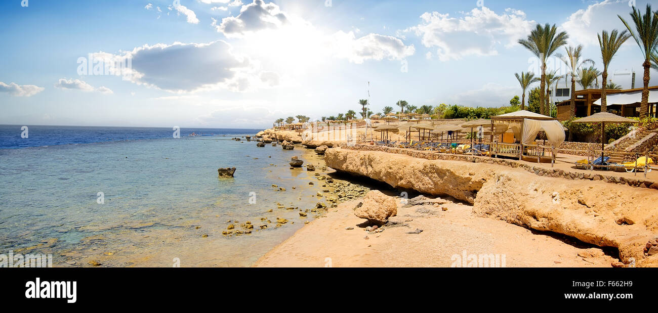 Coral reefs on beach of the Red sea - Stock Image