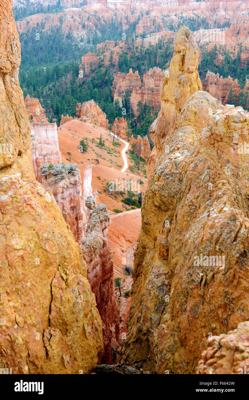 Spectacular landscape, Bryce Canyon National Park, Utah. - Stock Image