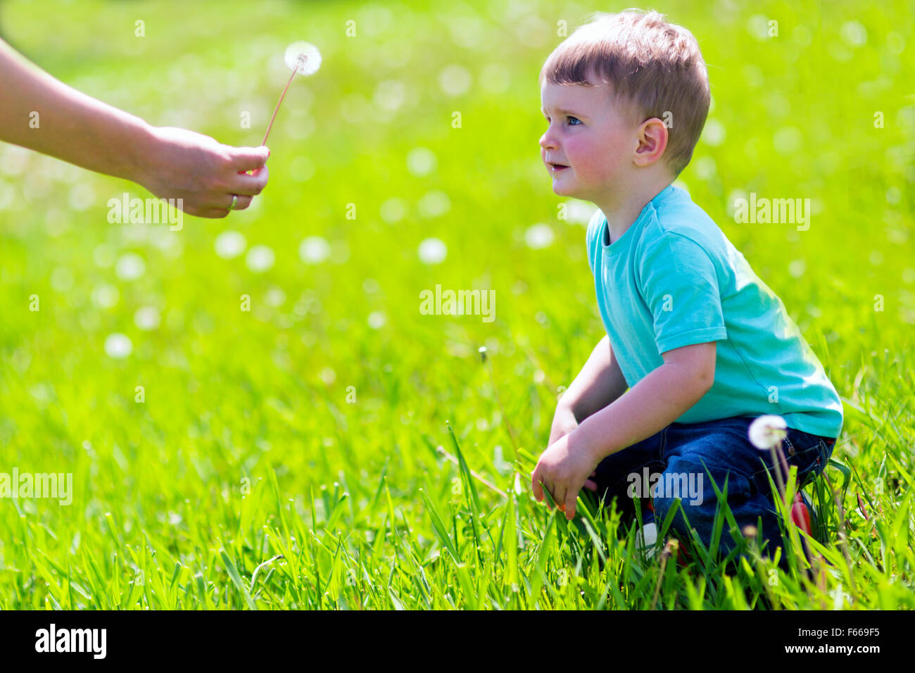 Boy receiving a dandelion in the field - Stock Image