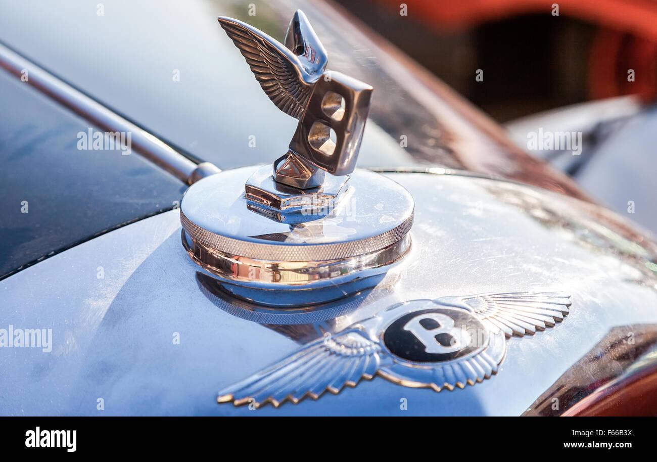 """Bentley logo """"Flying B"""" on a Bentley R Type, 1953 year Stock Photo"""