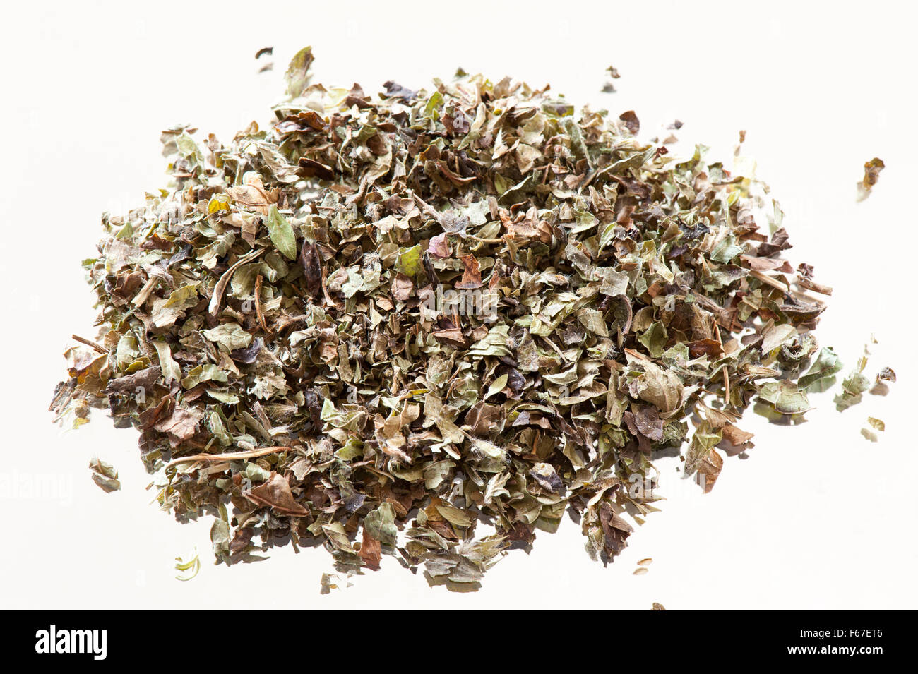 Green dry Melissa officinalis or lemon balm or balm mint, herbal tea leaves, portion lying flat on mirror with white Stock Photo