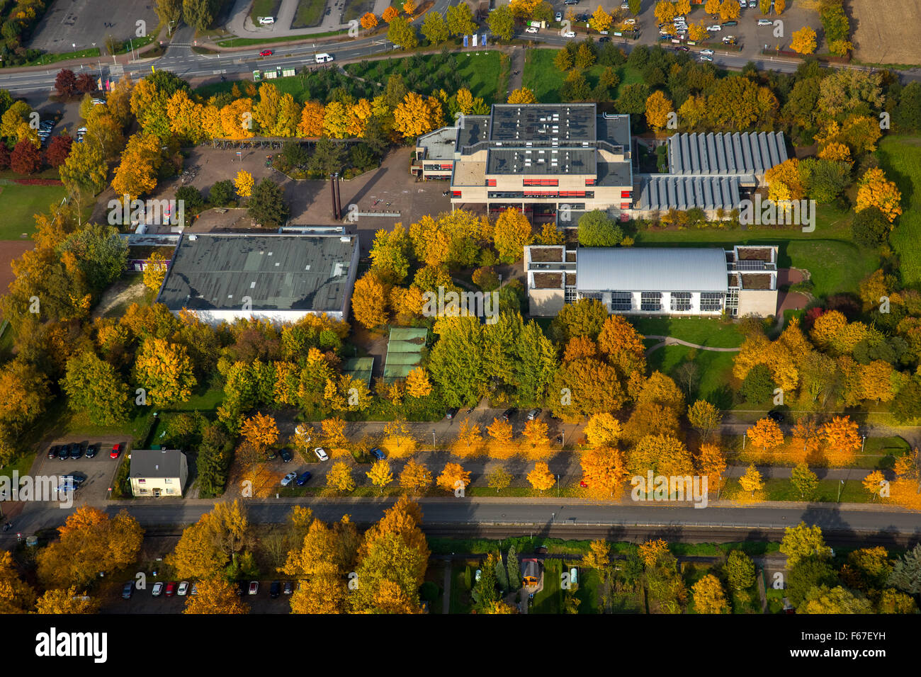 Freiherr-vom-Stein-Gymnasium in autumn leaves, Hamm, Ruhr area, North Rhine-Westphalia, Germany, Hamm, Ruhr area - Stock Image
