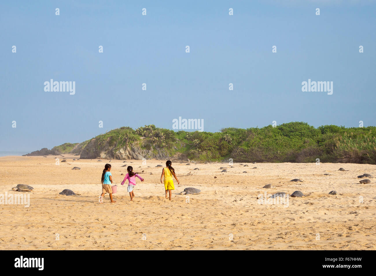 Indigenous children from the village of Ixtapilla on the beach during an arribazon of Olive Ridley sea turtles, - Stock Image