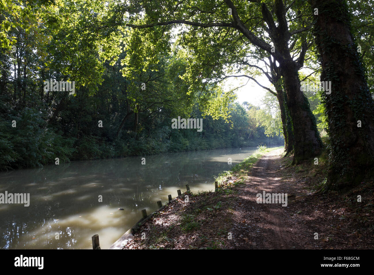 Towpath along the Canal du Midi between Trebes and Carcassonne, a well-used cycle track - Stock Image