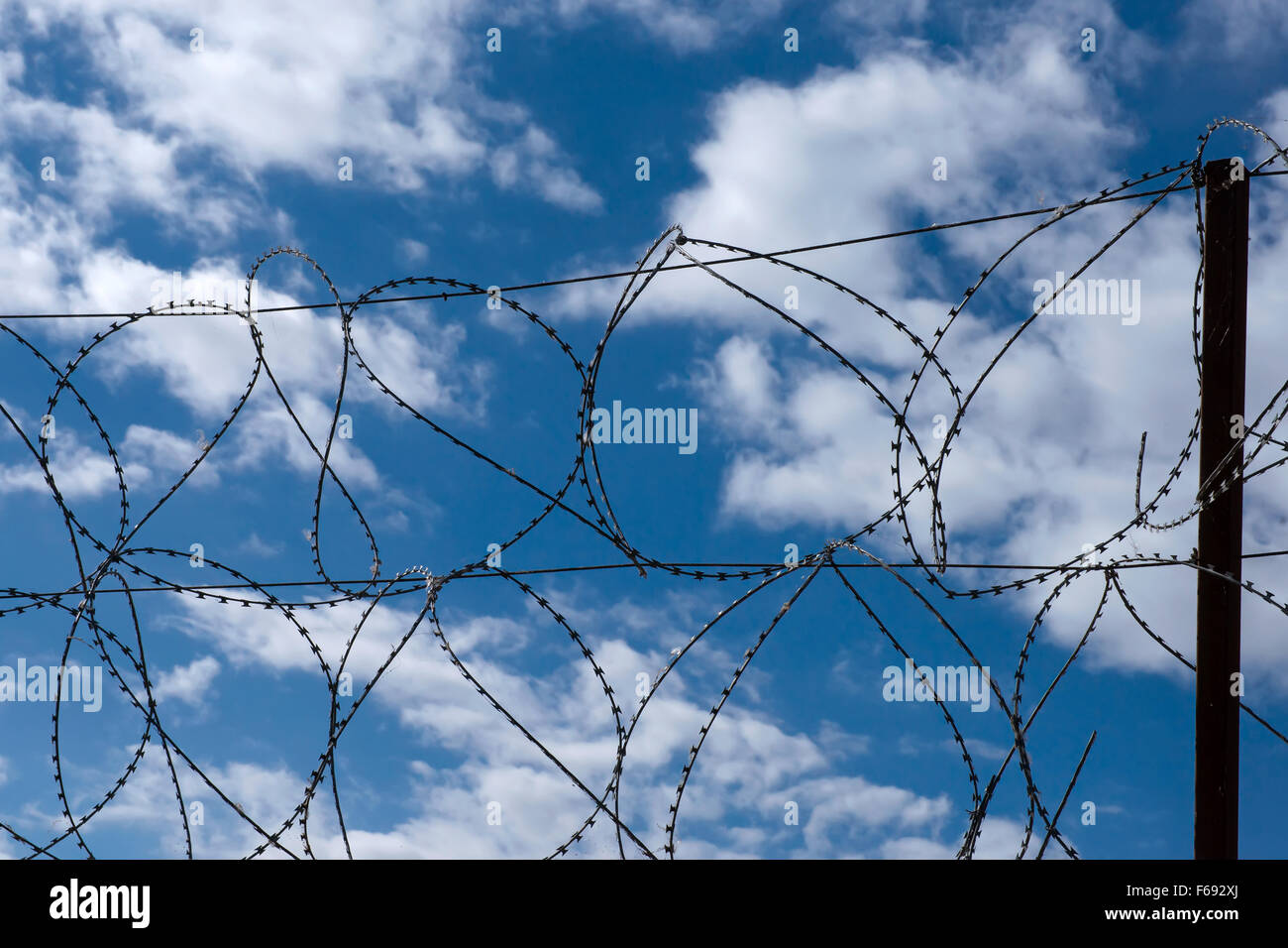 Barbed razor wire against blue cloudy sky - Stock Image