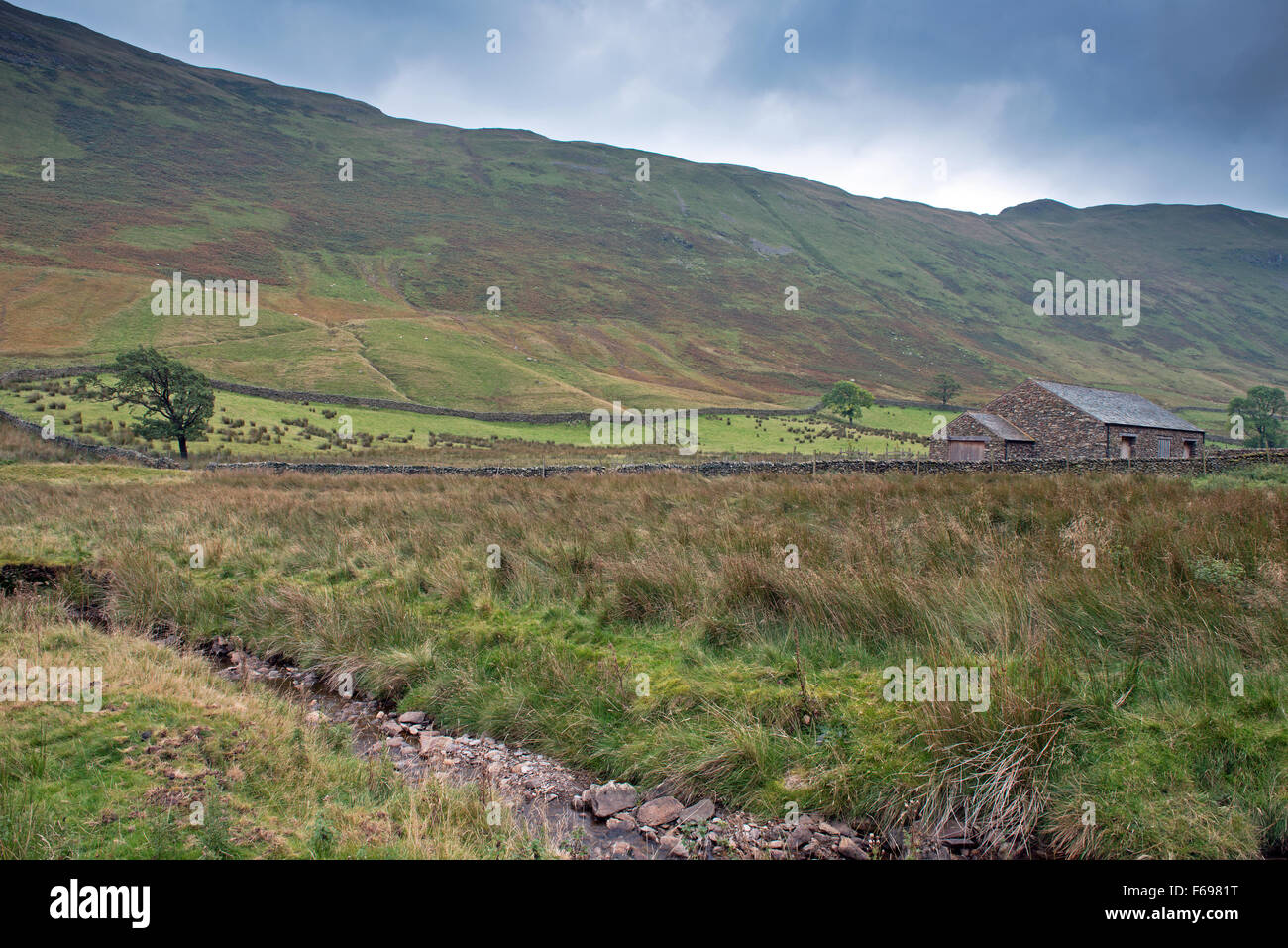A derelict building in the Boredale Valley, Martindale, Lake District, Cumbria, England, Uk, Gb. - Stock Image