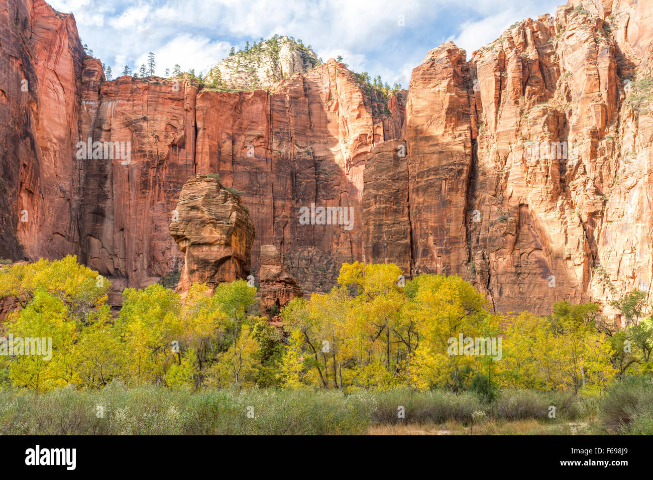 An Autumn afternoon in the Zion Canyon amphitheater known as the Temple of Sinawava, in Zion National Park, Utah. - Stock Image