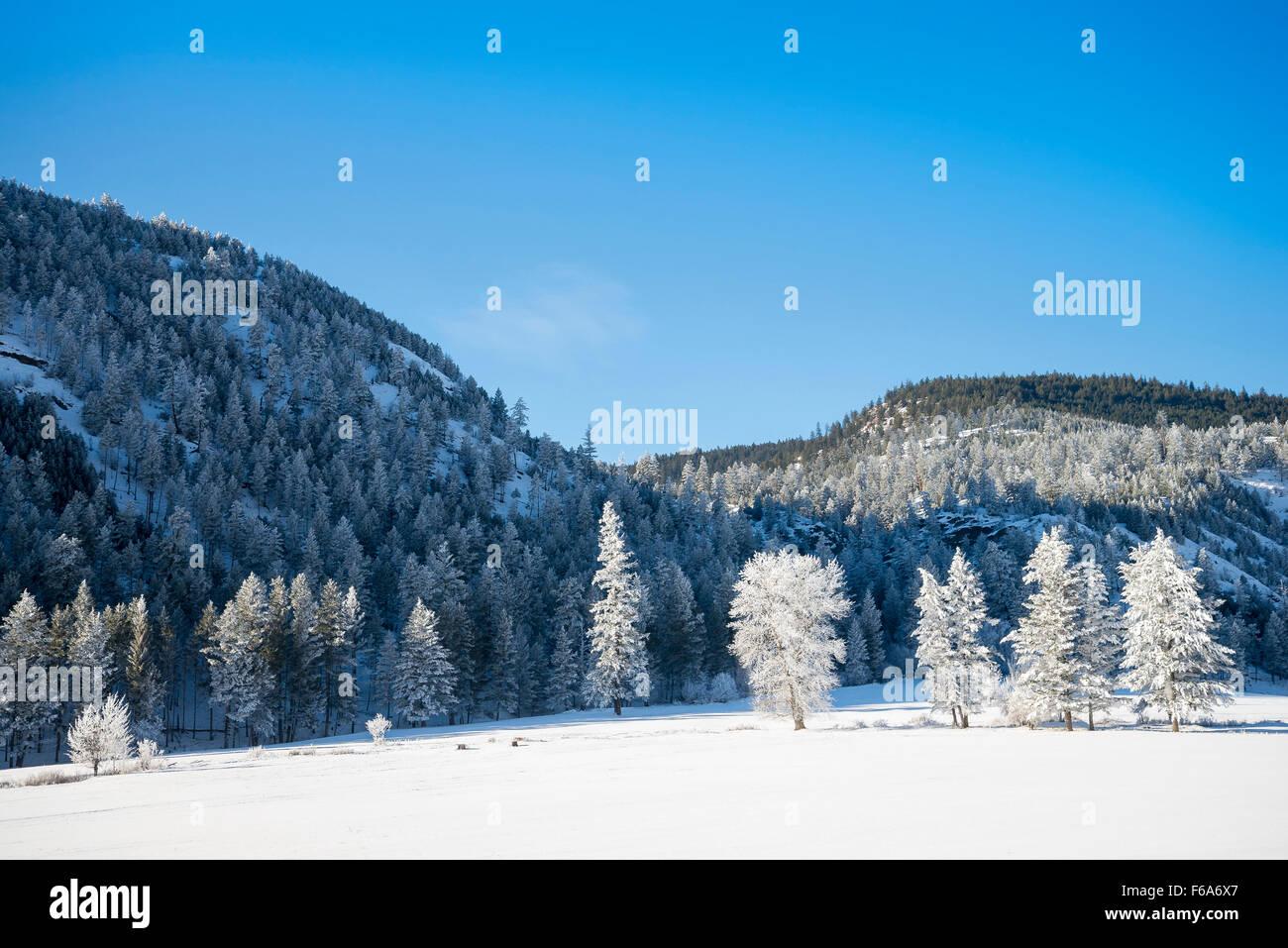 Winter scene near Cache Creek, British Columbia, Canada - Stock Image