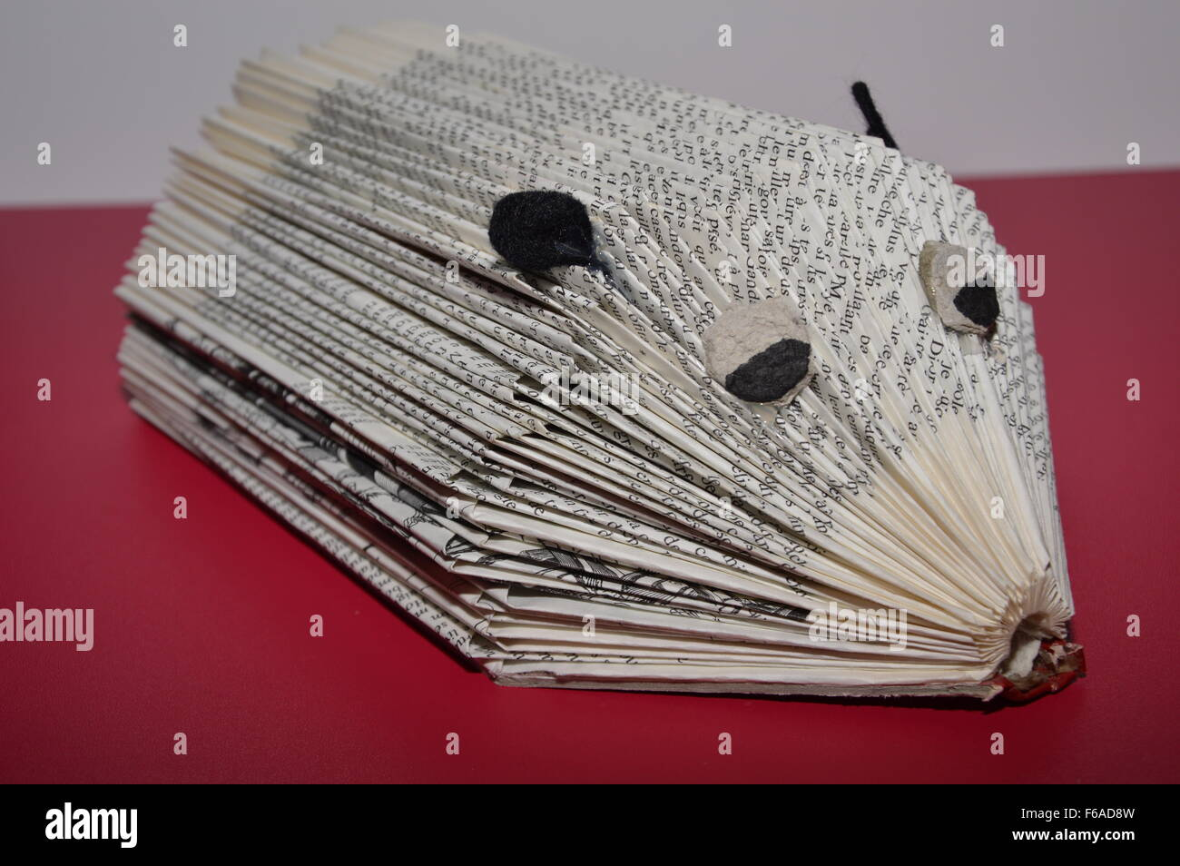 Transformation,a Book in a Hedgehog - Stock Image