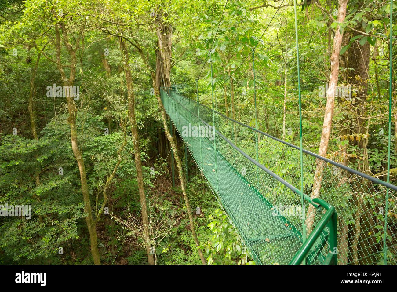 Suspended bridge at natural rainforest park, Costa Rica - Stock Image
