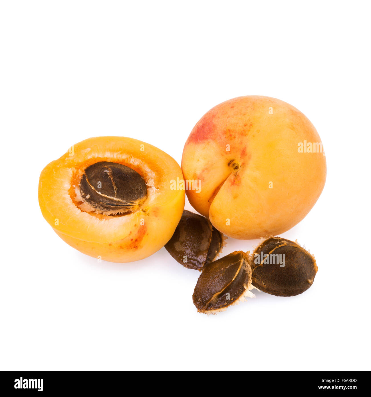 Apricot and half of fruit with fruits core - Stock Image