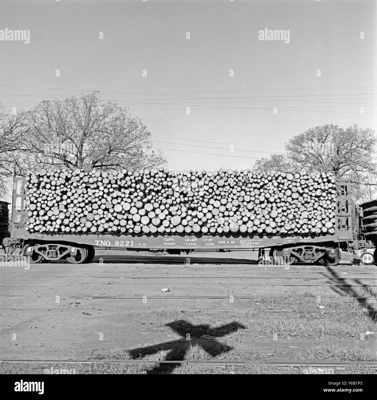 [Texas And New Orleans, Southern Pacific, 50 Ton Pulpwood