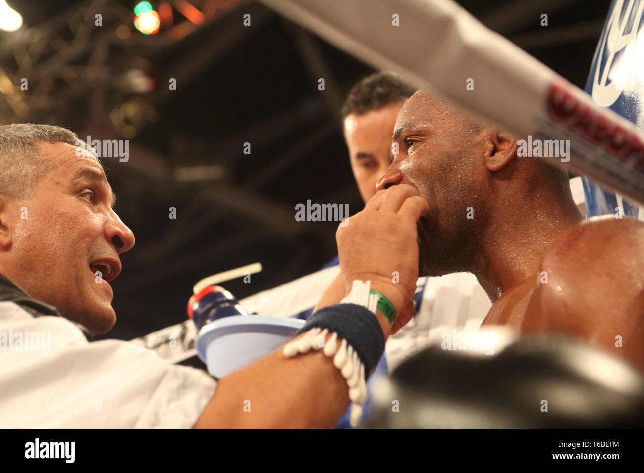 Coach puts protector in the mouth of Frenchman DouDou Ngumbu before round 7 of his fight with  WBO European light - Stock Image