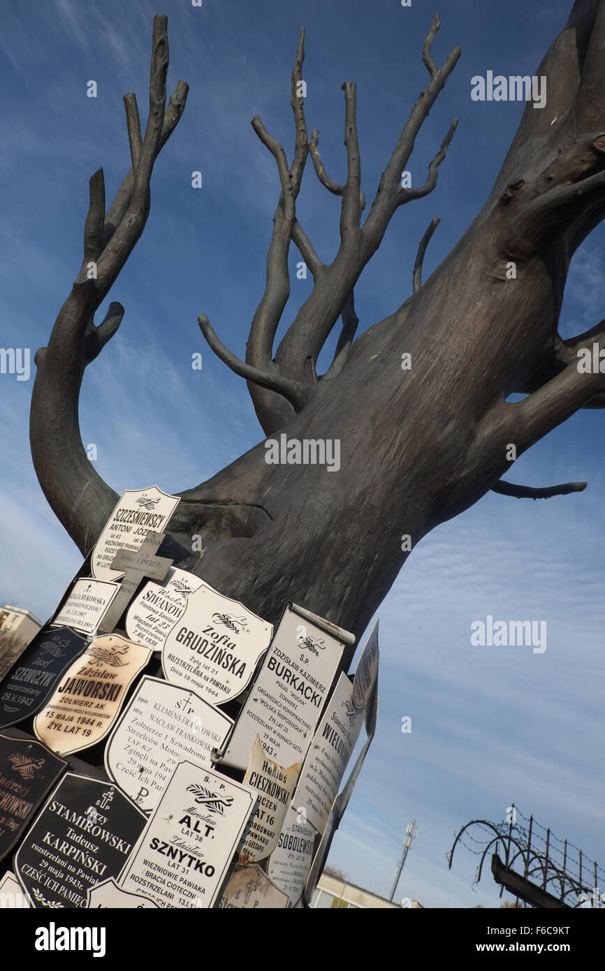 Warsaw Poland - Memorial tree at the entrance to the Pawiak prison used by the Germans during WW2 for torture and - Stock Image