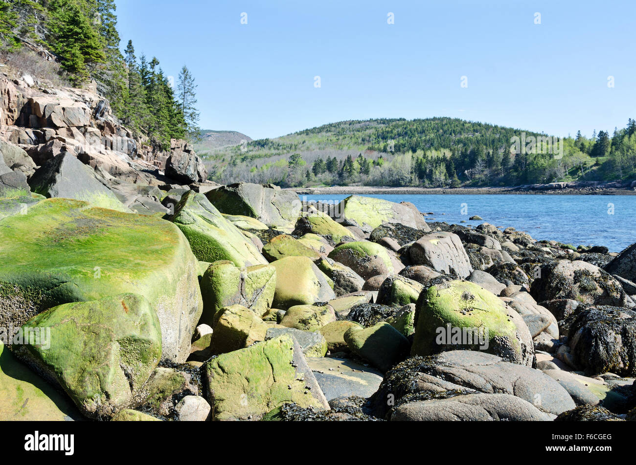Early spring in Otter Cove, looking toward Gorham Mountain, Acadia National Park, Maine. Stock Photo