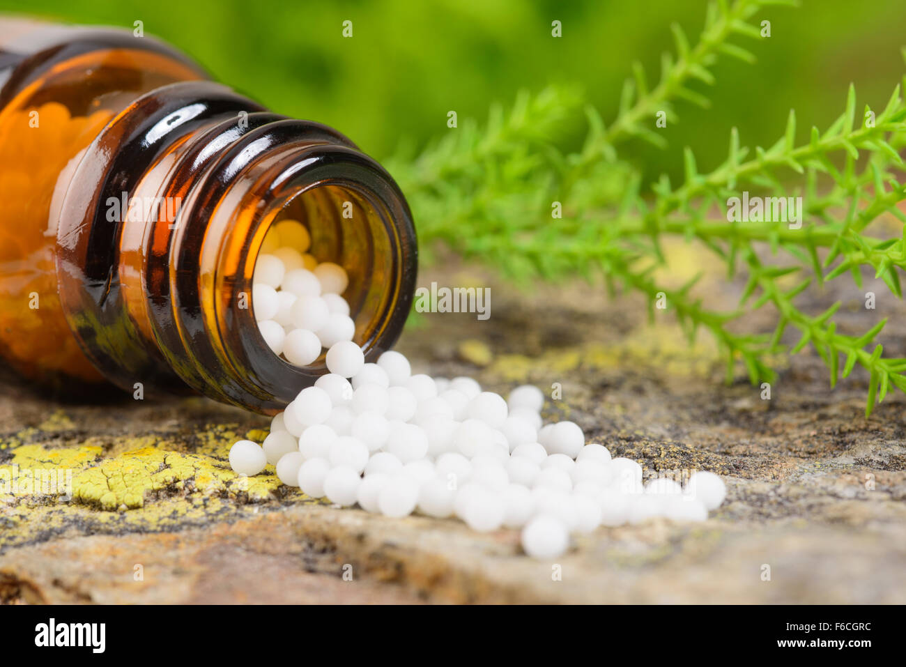 alternative medicine with herbal pills - Stock Image