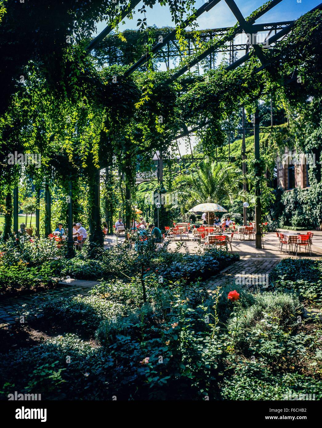 Cafe Terrace Inside Greenhouse Botanischer Garten Botanical Stock