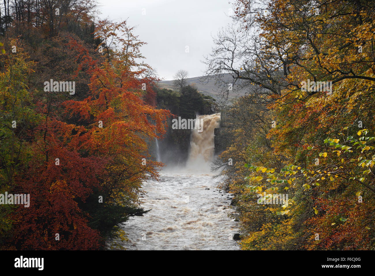 High Force waterfall on the River Tees, Teesdale. County Durham. England. UK. - Stock Image