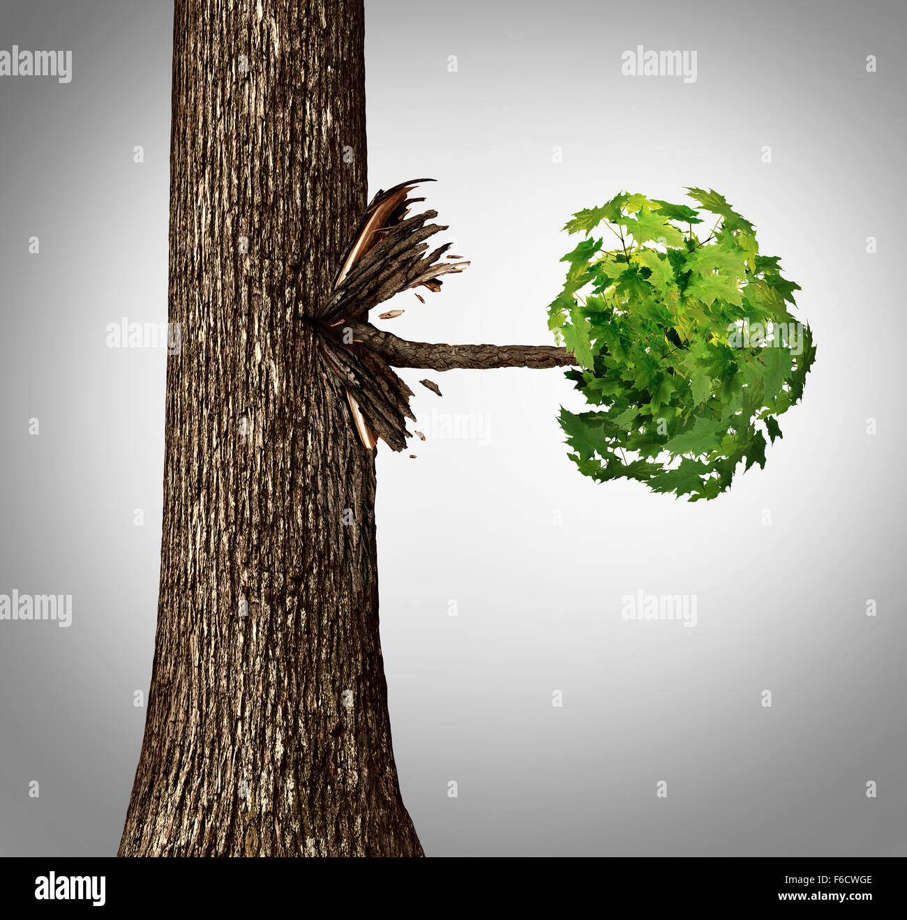 Offshoot concept as a lateral move business metaphor as a tree trunk with a sideways branch and leaves bursting - Stock Image