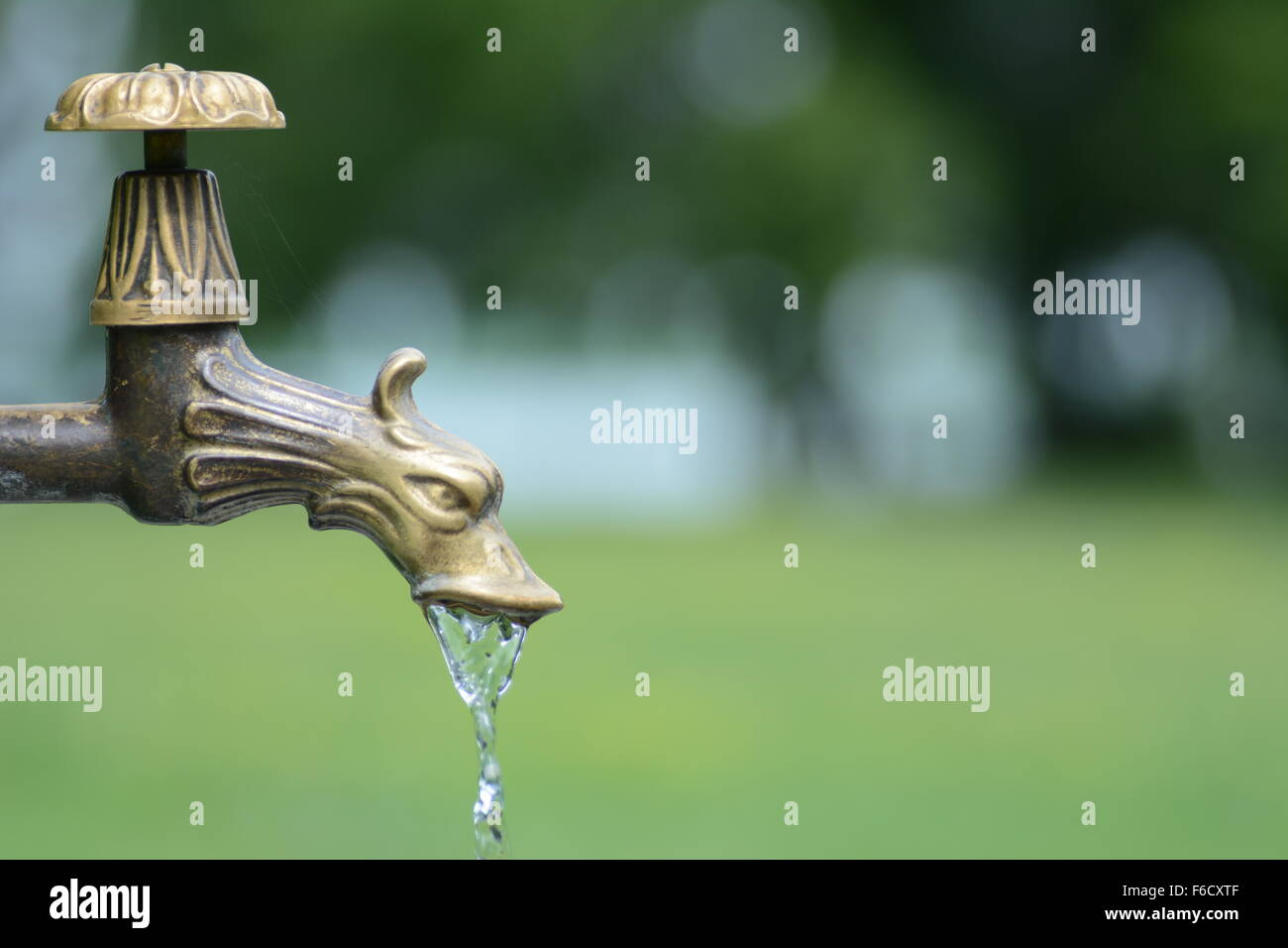 Brass dragon water tap in park with water to enjoy - Stock Image