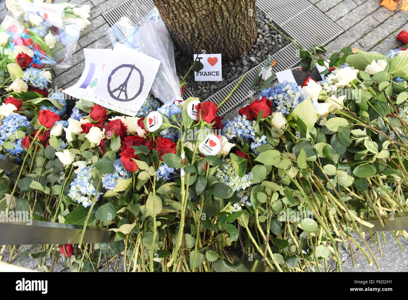 New York City United States 16th Nov 2015 Flowers And Signs Fill