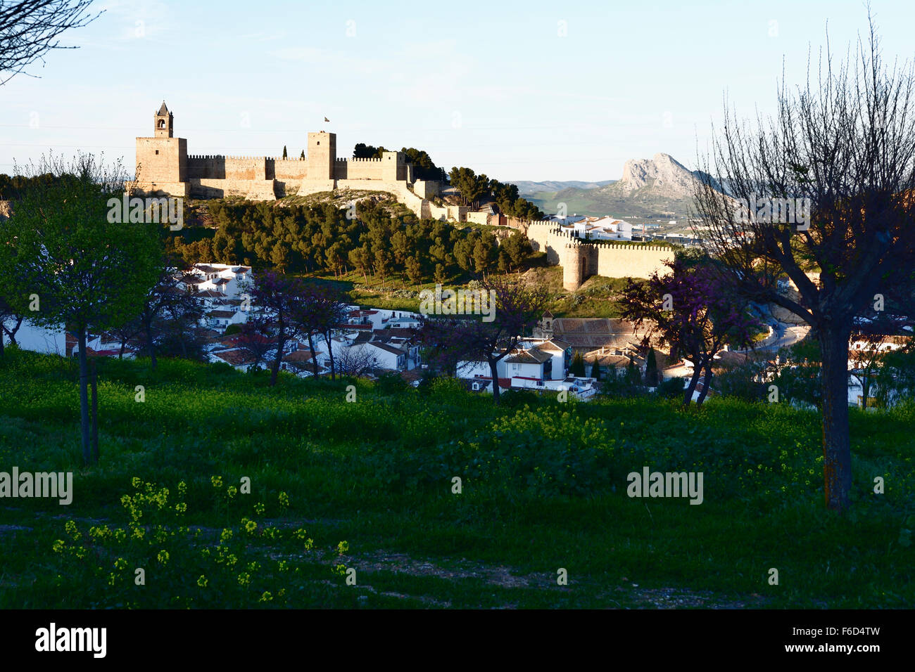 View Alcazaba fortress, Antequera. Malaga. Spain - Stock Image