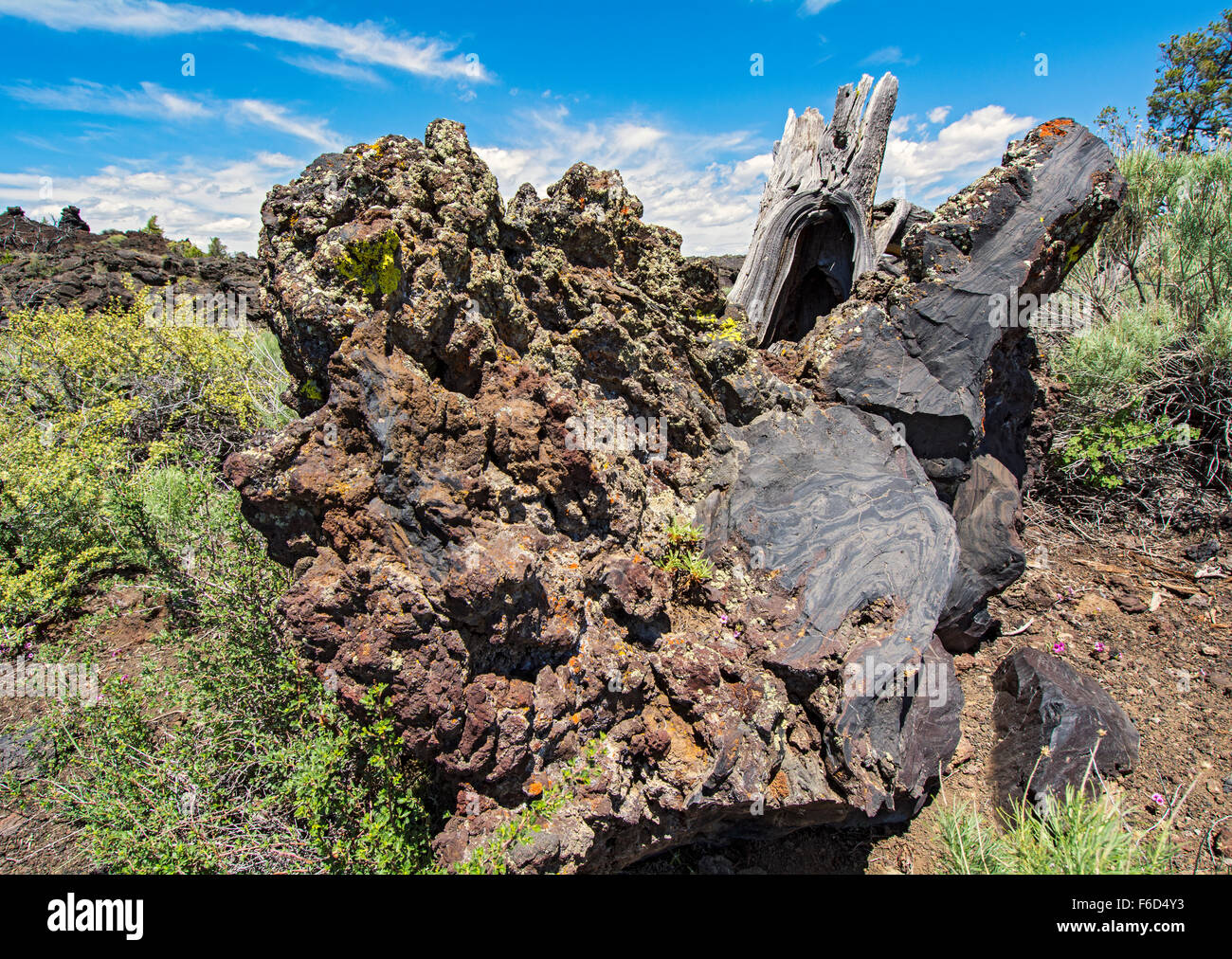 Idaho, Craters of the Moon National Monument and Preserve, Devil's Orchard Trail through lava field Stock Photo